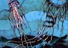 La danse des meduses