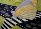Passage papillon
