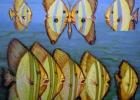 Rèveries d\'un poisson